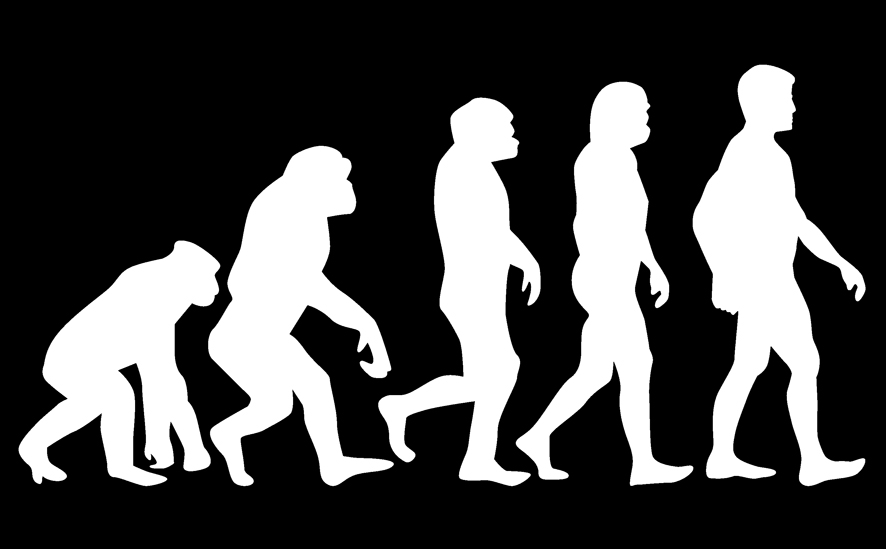 Mit Evolution führen
